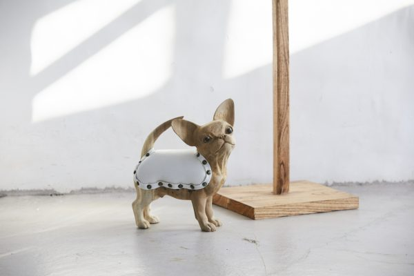Jinny the Chihuahua Decor Accent